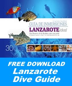 Dive Guide Lanzarote